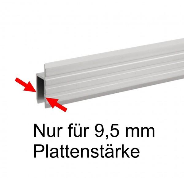 Serviceklappenprofil 6130, 9,5 mm, 2 Meter